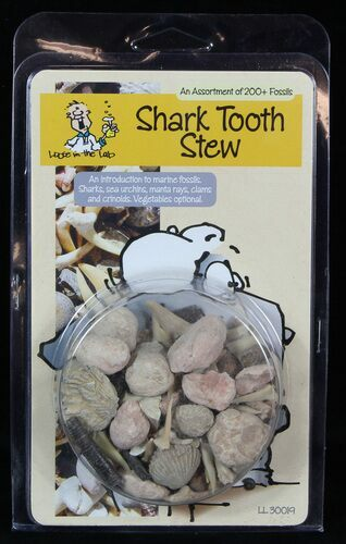 "Fossil ""Shark Tooth Stew"" Marine Fossils Kit - Photo 1"