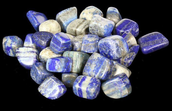 Bulk Polished Lapis Lazuli - 8oz. (~ 25pc.) - Photo 1