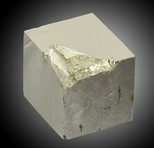 Pyrite - Fossils For Sale - #31137