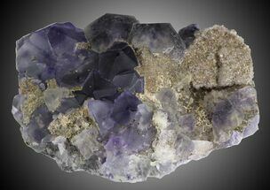 "Buy 2.6"" Fluorite and Quartz - Fujian Province, China - #31552"