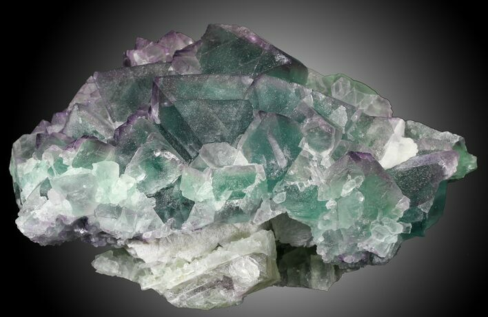 "Sharp 5.32"" Fluorite on Aragonite & Quartz, China"