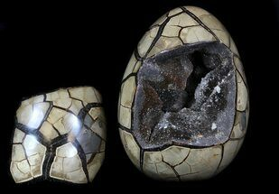 "Buy 7.3"" Septarian ""Dragon Egg"" Geode With Removable Section - #33505"