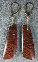 Brilliant, Red Agatized Dinosaur Gembone Earrings  For Sale, #33827