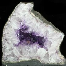 Quartz var. Amethyst - Fossils For Sale - #34449