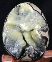"4.1"" Septarian ""Dragon Egg"" Geode - Yellow Calcite For Sale, #34703"