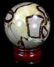 "Buy 2.7"" Polished Septarian Sphere - #36073"