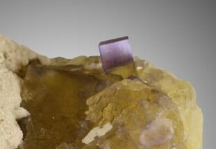 "Sharp 3.4"" Purple on Yellow Cubic Fluorite - Cave-in-Rock, Illinois For Sale, #32198"