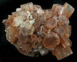 Aragonite - Fossils For Sale - #37314