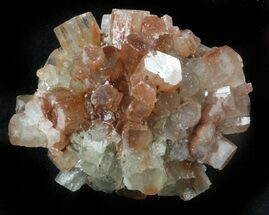 "Buy 1.5"" Aragonite Twinned Crystal Cluster - Morocco - #37318"