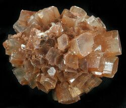 "1.8"" Aragonite Twinned Crystal Cluster - Morocco For Sale, #37331"