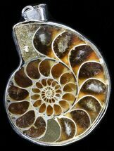 Buy Fossil Ammonite Pendant - 110 Million Years Old - #37888