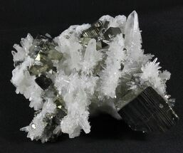 Buy Collector Quality, Quartz With Cubic Pyrite - Peru - #38908