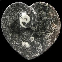 "Buy 4.5"" Heart Shaped Fossil Goniatite Dish - #39364"