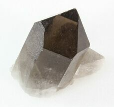 "2.1"" Smoky Quartz Crystal - Brazil For Sale, #42041"
