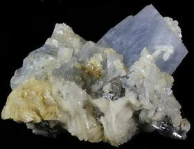 Thick, Tabular Blue Barite Crystals on Pyrite - Morocco For Sale, #42224