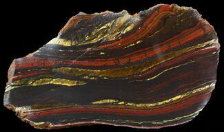 Tiger Iron Stromatolite - Fossils For Sale - #42570
