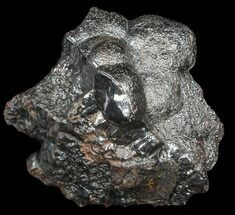 "2.4"" Kidney Ore (Botryoidal Hematite) - Morocco For Sale, #42086"
