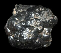 Hematite - Fossils For Sale - #42096