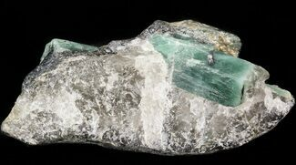 Buy Beryl (Var: Emerald) Crystals in Biotite & Quartz - Bahia, Brazil - #44125