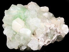 "Buy 3.7"" Zoned Apophyllite Crystals with Stilbite - India - #44416"