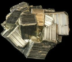 Pyrite - Fossils For Sale - #44574