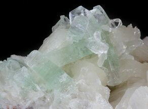 "Buy 5.4"" Zoned Apophyllite Crystals on Stilbite Association - India - #44443"