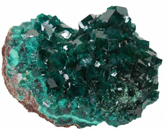 "Exceptional 2.6"" Gemmy Dioptase Cluster - Namibia"