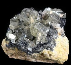 "1.4"" Cerussite Crystals on Galena- Morocco For Sale, #44771"