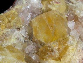 "Buy 2.0"" Lustrous, Yellow Cubic Fluorite Crystals - Morocco  - #44899"