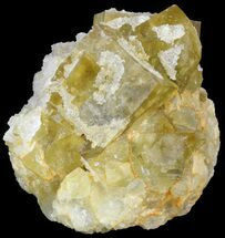 "Buy 3.0"" Quartz Encrusted Yellow Cubic Fluorite Cluster - Morocco  - #44854"