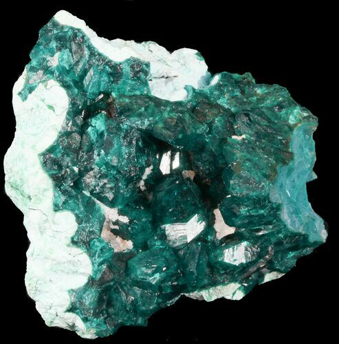"2.20"" Emerald Green, Dioptase Cluster on Plancheite - Congo"