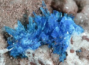Buy Vibrant Blue Cavansite on Stilbite - India - #45871