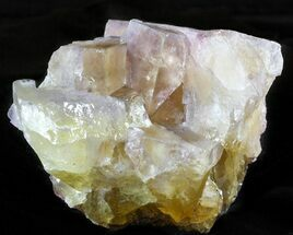 "Buy 2.9"" Cubic Fluorite Crystal Cluster - Cave-in-Rock, Illinois - #45925"