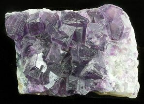 "Buy 3.2"" Dark Purple Cubic Fluorite Crystal Cluster - China - #45931"