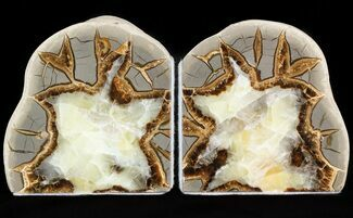 "Buy 4.2"" Polished Septarian Bookends - #45928"