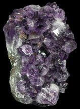 "Buy 4.8"" Amethyst Cut Base Cluster - Uruguay - #46183"