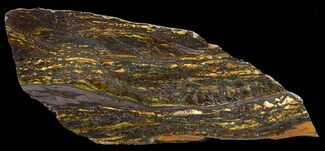 Tiger Iron Stromatolite - Fossils For Sale - #46611
