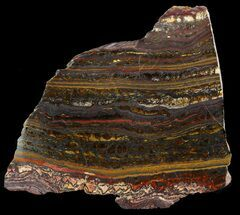 "5.8"" Polished Tiger Iron Stromatolite - (2.7 Billion Years) For Sale, #46643"