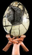 Septarian with Calcite & Barite - Fossils For Sale - #47478