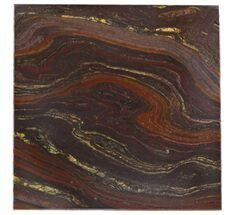 Tiger Iron Stromatolite - Fossils For Sale - #48786