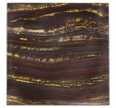 "Buy 4"" Tiger Iron Stromatolite ""Shower Tile"" - 2.7 Billion Years Old - #48805"