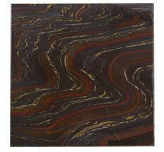 Tiger Iron Stromatolite - Fossils For Sale - #48807