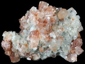 Aragonite - Fossils For Sale - #49254