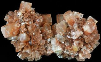 Aragonite - Fossils For Sale - #49260