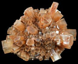 Aragonite - Fossils For Sale - #49308