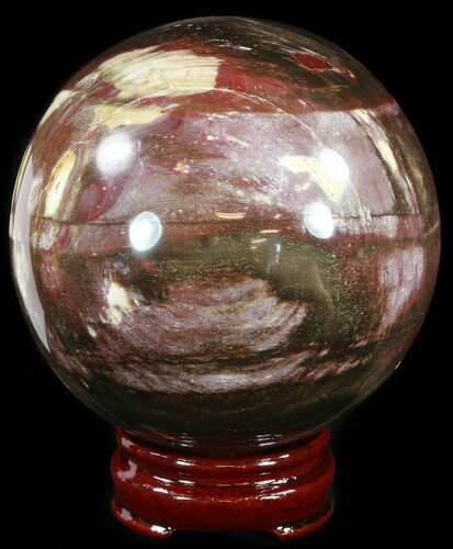 "4.1"" Colorful Petrified Wood Sphere"