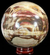 "Buy 3.7"" Colorful Petrified Wood Sphere - #49756"