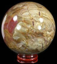 "3.4"" Colorful Petrified Wood Sphere For Sale, #49778"