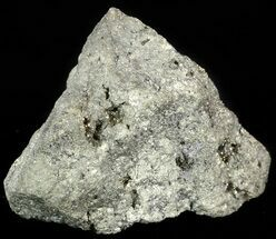 Pyrite - Fossils For Sale - #50139