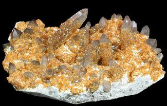 Quartz var. Smoky & Garnet var. Spessartine - Fossils For Sale - #51036